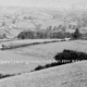 Cann from Melbury Hill